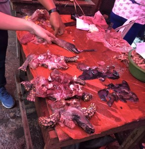Bushmeat being sold in a market in Iquitos